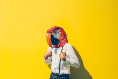 Fotodoos fotoshoot met latex papegaai masker